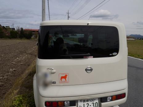 斐川チューリップ&バーディ11