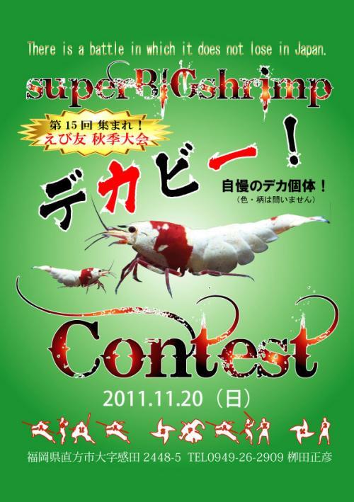 2011-11-20-dekabi1[1]_convert_20111017235506