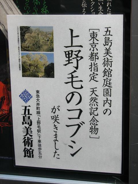 五島美術館の春 065