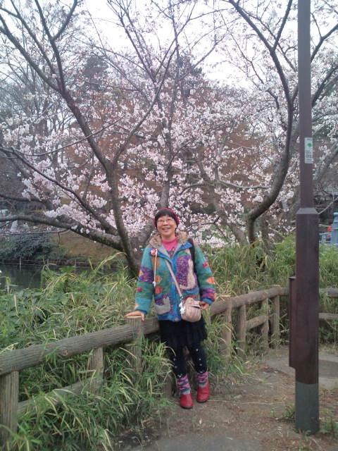 井の頭の桜 004