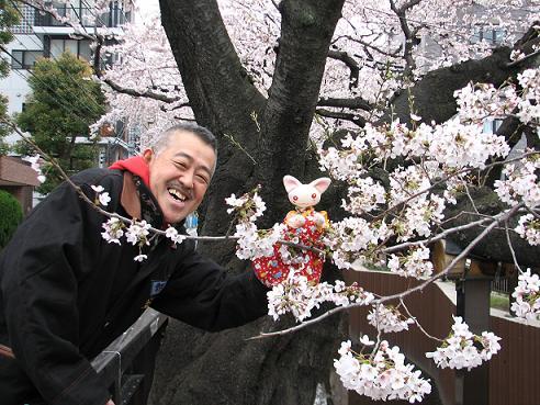 桜にゃあこ 069
