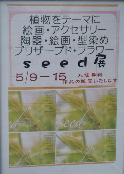 seed展