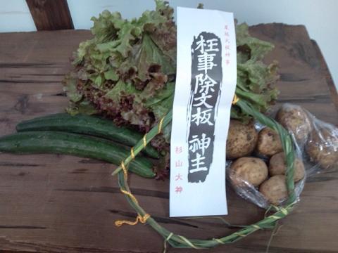 ママちゃまの夏野菜
