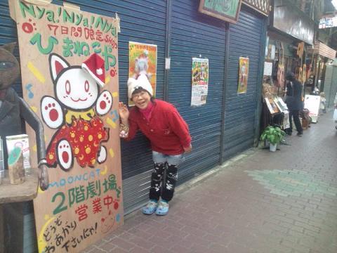 降る猫会場 006