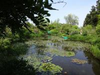 ガーデンミュージアム比叡1