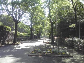 行田公園の画像 02