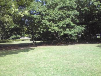 行田公園の画像 07