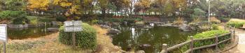 行田公園の西側にある池です。