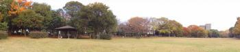 行田公園の西側の広場です。