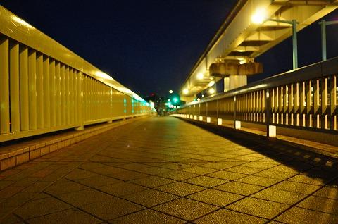 DSC_4133.jpg