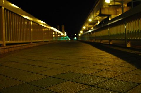 DSC_4703.jpg