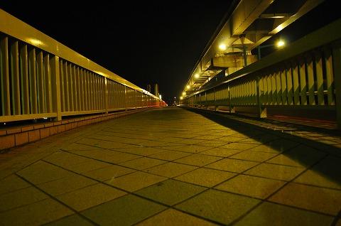 DSC_5688.jpg