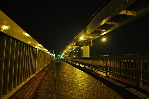 DSC_6394.jpg