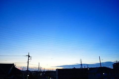DSC_8262.jpg
