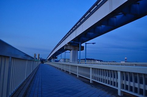 DSC_8535.jpg