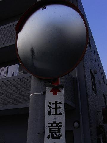 R0030524.jpg