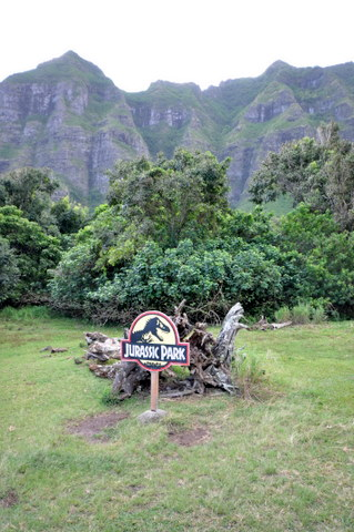 DSC_Hawaii_HNL_0019.jpg