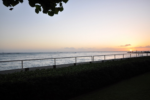 DSC_Hawaii_HNL_1018.jpg