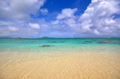 DSC_Hawaii_HNL_1130.jpg