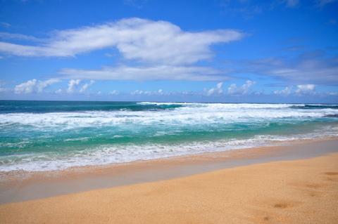 DSC_Hawaii_HNL_1145.jpg