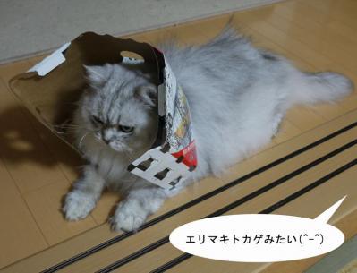 CMデビュー4