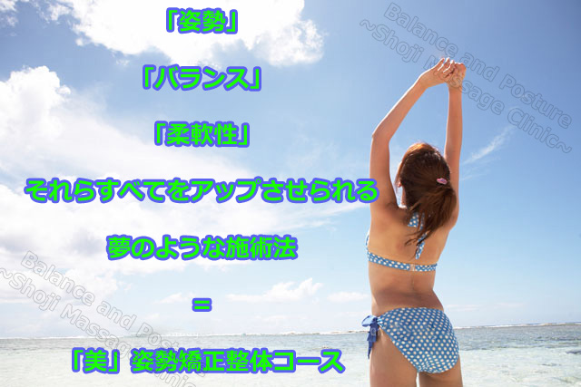 022660146A27.jpg