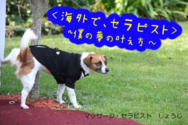 IMG_5099A.jpg