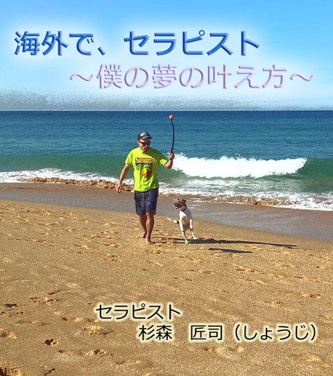 hyoshiA.jpg
