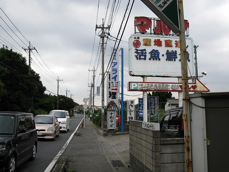20080810_158.jpg