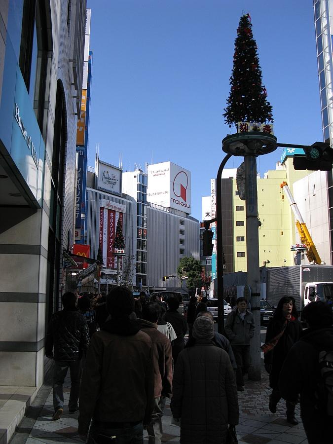 20090105_031.jpg