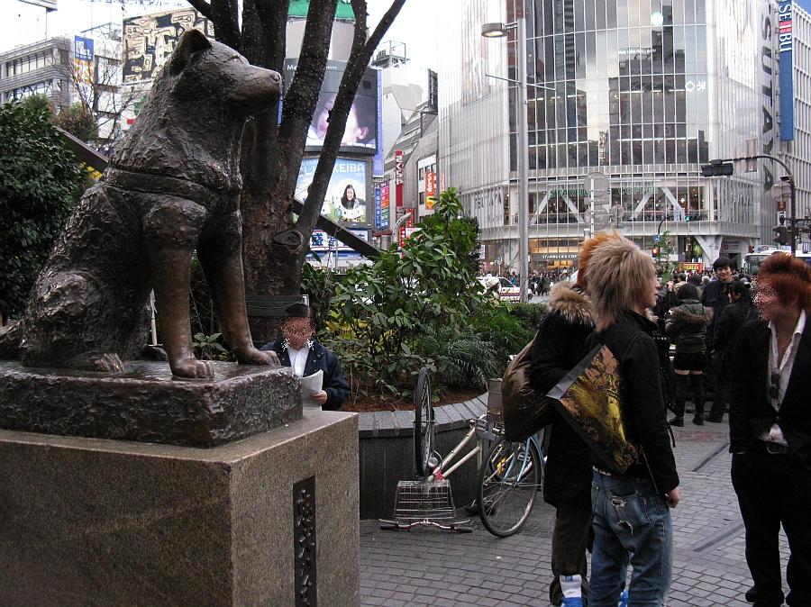 20090105_159.jpg