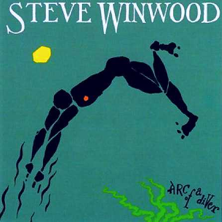 Steve Winwood While You See a Chance