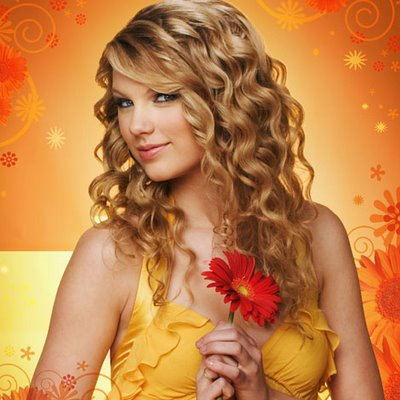 Taylor Swift 2008 Shouldve Said No #33001