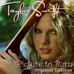 Taylor Swift 2008 Picture to Burn (26)