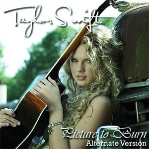 Taylor Swift 2008 Picture to Burn (32)