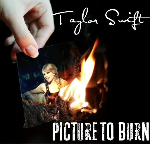 Taylor Swift 2008 Picture to Burn (28)