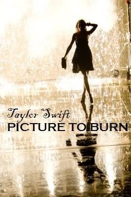 Taylor Swift 2008 Picture to Burn (31)
