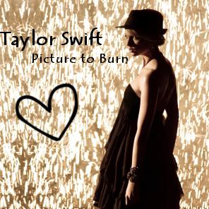 Taylor Swift 2008 Picture to Burn (21)