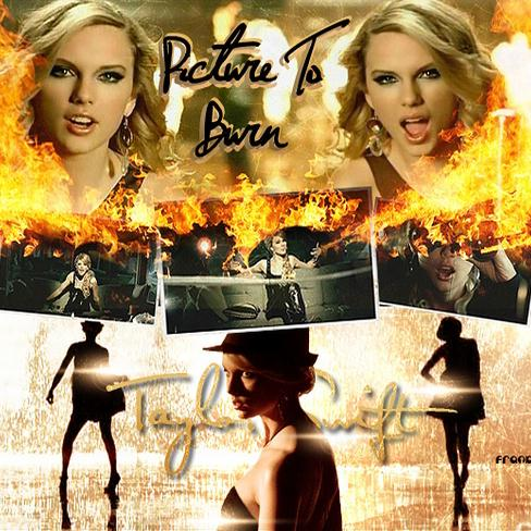 Taylor Swift 2008 Picture to Burn (25)