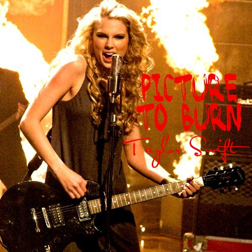 Taylor Swift 2008 Picture to Burn (30)
