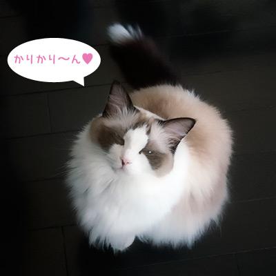 20111006_5.jpg