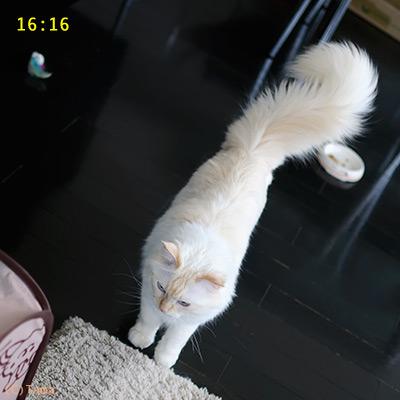 20111010_4.jpg