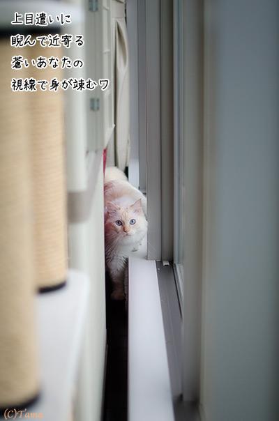 20111011_3.jpg