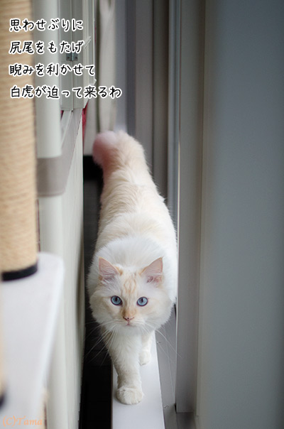 20111011_4.jpg