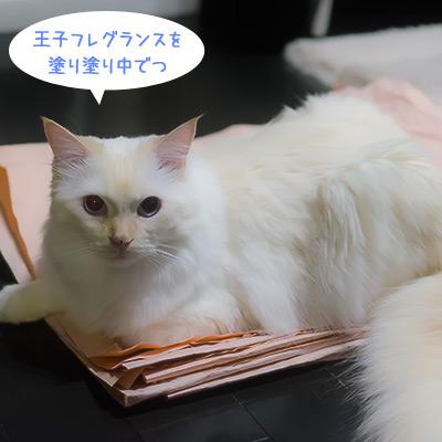20111016_4.jpg