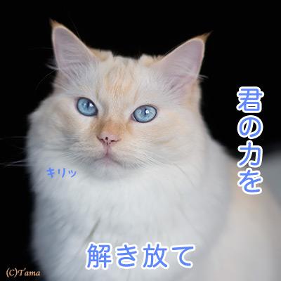 20111019_4.jpg
