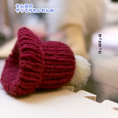 20130124_5.jpg