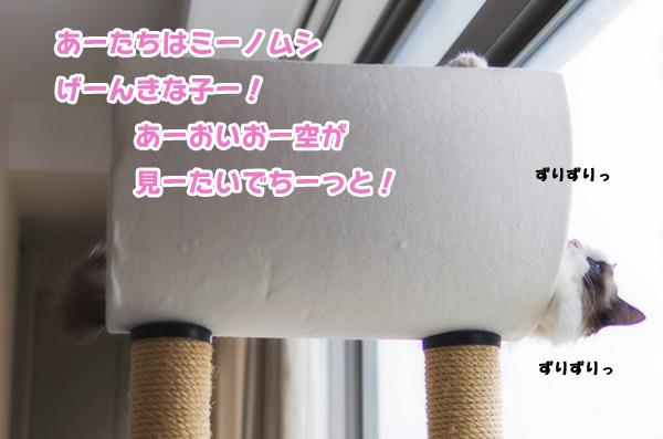 20130607_1.jpg