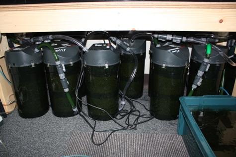 濾過槽設置