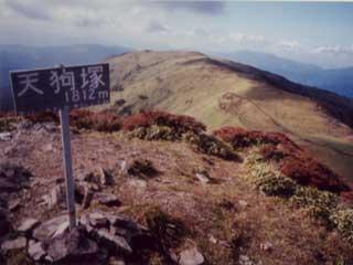 19981025teng-320.jpg